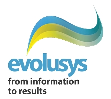 Logo Evolusys, from information to results